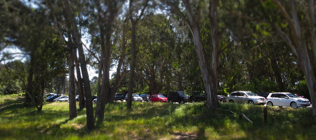 Parking at the Polo Fields, Golden Gate Park; May 11, 2014