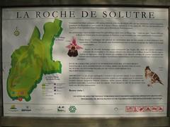 Solutré-Pouilly » Promenade à la Roche de Solutré, 2010