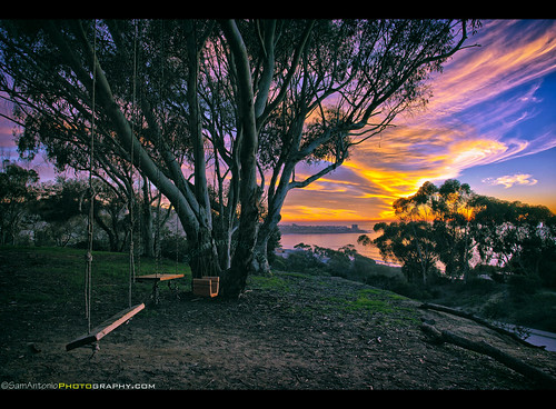 ocean california park travel blue trees sunset sea summer vacation sky sunlight holiday seascape abstract color green beach water playground yellow clouds relax landscape fun outdoors happy evening coast seaside colorful paradise peace sandiego outdoor metallic empty branches horizon swings dream nobody lajolla swing seats enjoy romantic swingset void relaxation desolate barren deserted vacate canon1740llens photographylocations canon5dmarkii samantoniophotography sandiegosunsetlocation ucsdswings lajollaswings