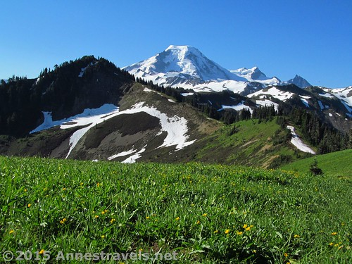 A pretty typical view from the northern end of Skyline Divide, Mount Baker-Snoqualmie National Forest, Washington
