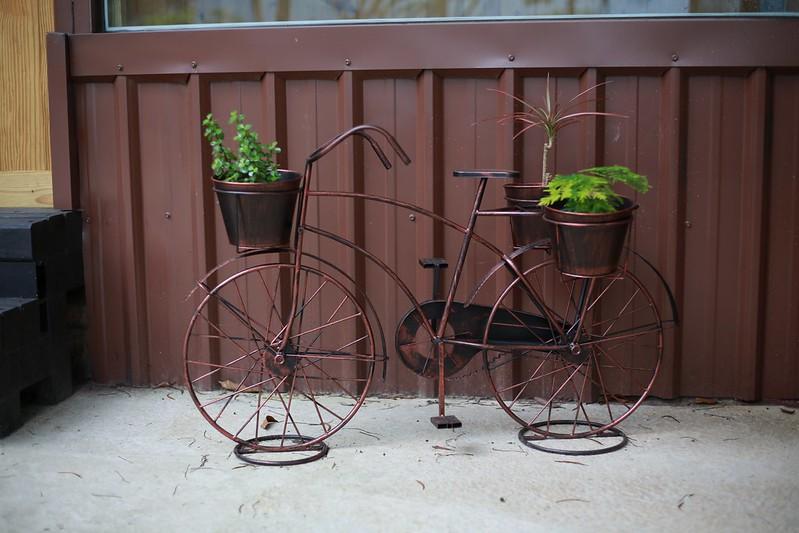 盆栽腳踏車