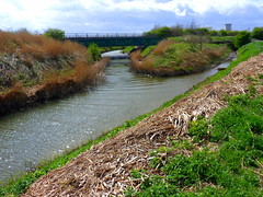 Hedon Haven onto Burstwick Drain