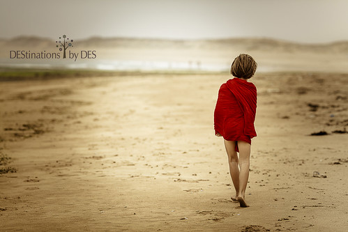 Beach alone