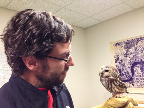 Troy Walters and his education Northern Saw-whet Owl at Trees for Tomorrow