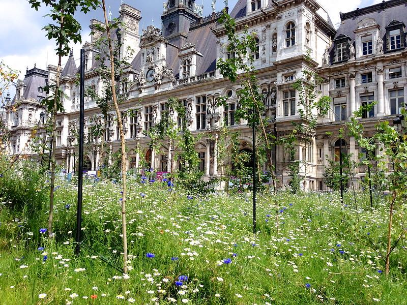 Jardin ephémère sur le parvis de l'Hôtel de Ville jusq'au 12 juillet 2013