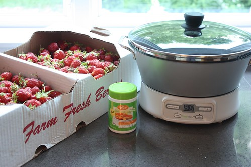 Ball freshTech Automatic Jam & Jelly Maker