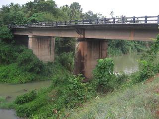 A view of the Mangattukadavu bridge from the river banks