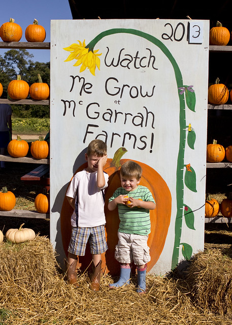 pumpkinpatch2013_adollopofmylife