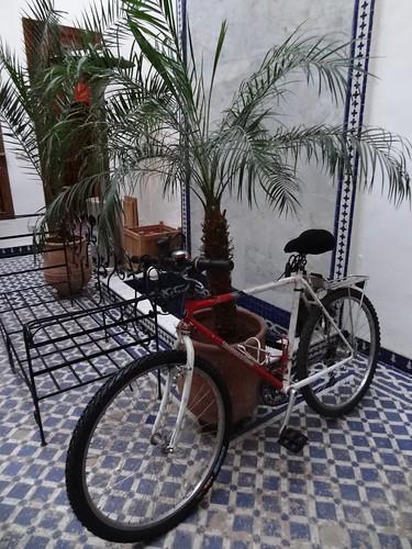 دراجتي الجديدة في فاس