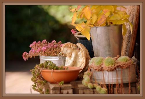 Gartenstilleben