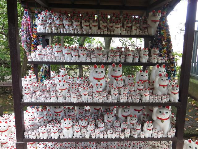 豪徳寺・招き猫 / Manekineko in Gotokuji - Setagaya, Tokyo