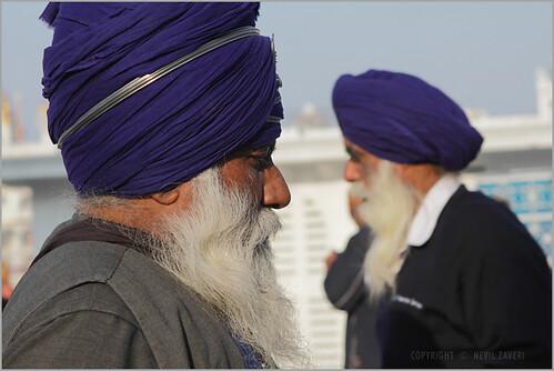 sikhs, amritsar