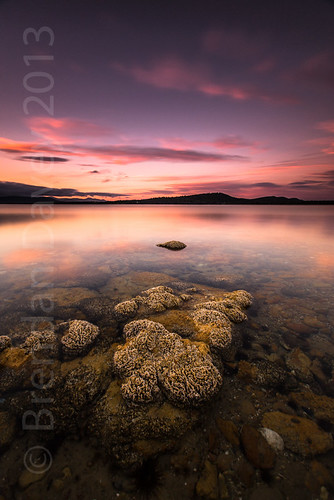 Mortimer Bay Sunset by Brendan Davey