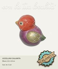 C-13-Uccellino-Calamita