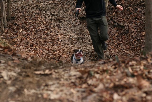 Charlie Powhite Hike Feb 2 (58)