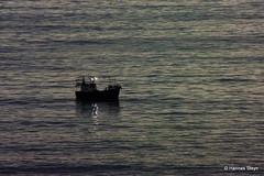 Tjokka boat on the sea