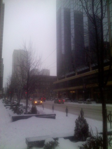Winter snowfall, 12 March 2014 (5)