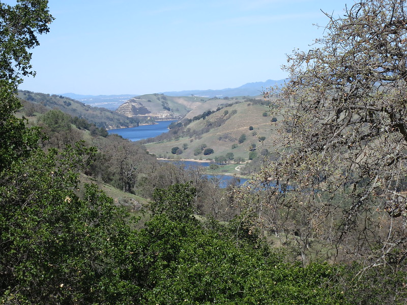 Looking north down at Lake Del Valle from the Ohlone Wilderness Trail.