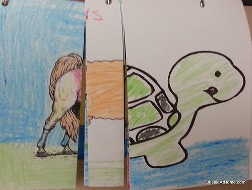 Daisy-Animal-Flip-Books-Turtleliss