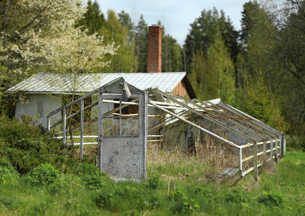 The Forgotten Greenhouse
