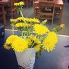 Best desk #bouquet ever. #dandelions #mothersday #lovemykids