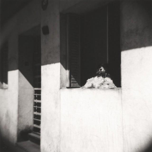 balconeando