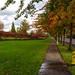 Hillsboro Walkabout, Oregon - 49