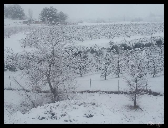 Nevando en Lleida