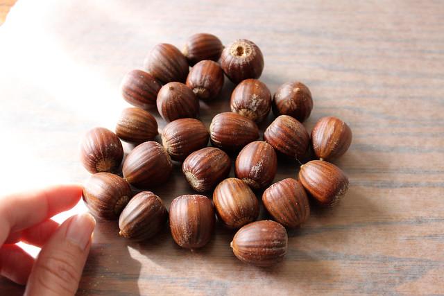 gathering acorns...