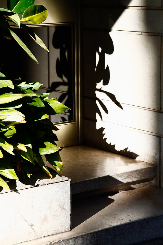 Tuukka13 - Lights and Shadows in Portugal - 12.14-01.15  (11 of 18)
