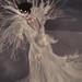 Rehana~Winter Queen