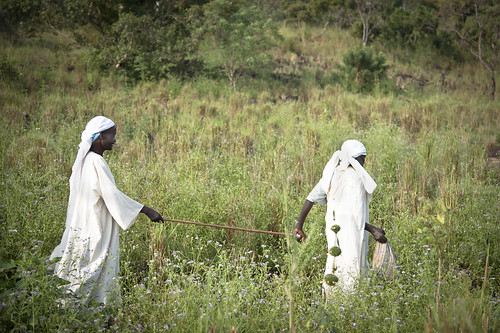 africa southsudan refugees ethiopia unhcr gambella gambellaregion southsudaneserefugees tierkidirefugeecamp