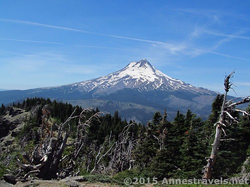 Mt. Hood from the summit of Lookout Mountain, Mount National Forest, Oregon