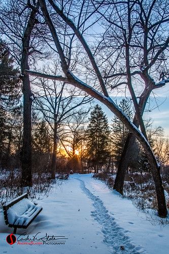 trees winter sunset snow ice nature wisconsin canon landscape frozen unitedstates eagle path horizon landscapephotography bringit discoverwisconsin travelwisconsin 5dmarkiii andrewslaterphotography wicounties paradisespringnaturetrail