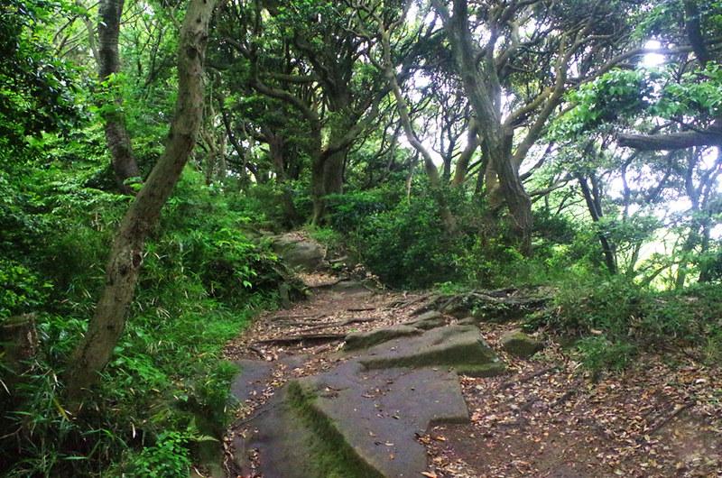 toomilog-tengoku_Hiking_trail006