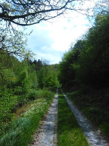 Ardennes, Bouillon, Bellevaux, the Aleines walk.