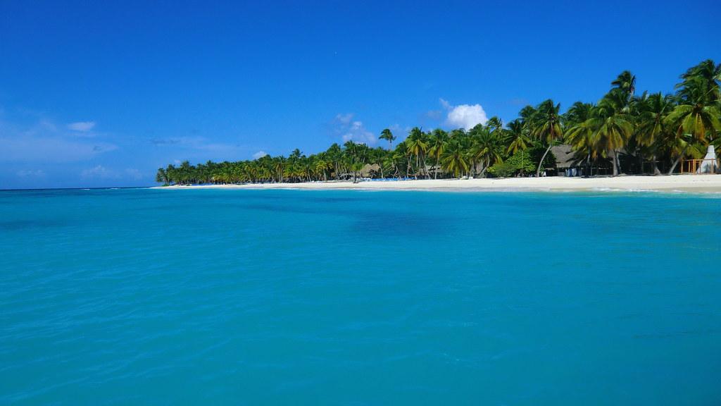 Dominican-Republic - Island of Saona - wonderful blue sea & white sandy beaches & palms