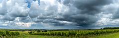 L'été est-il vraiment en approche? / Is summer really knocking at the door? - Photo of Verrières