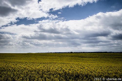 _blühende_landschaft by l--o-o--kin thru