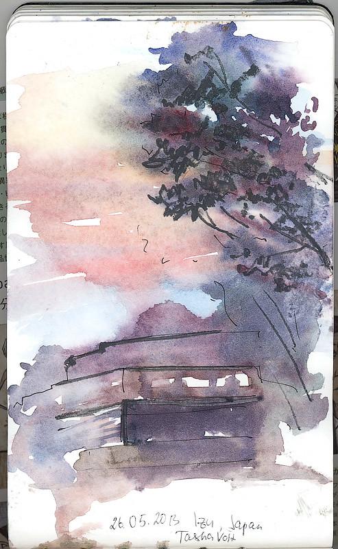 Izu in evening
