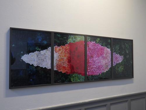 Ingvild Hamre: Et hav av roser... et hav av kjærlighet