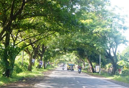 Makassar-Bira-Minivan (13)