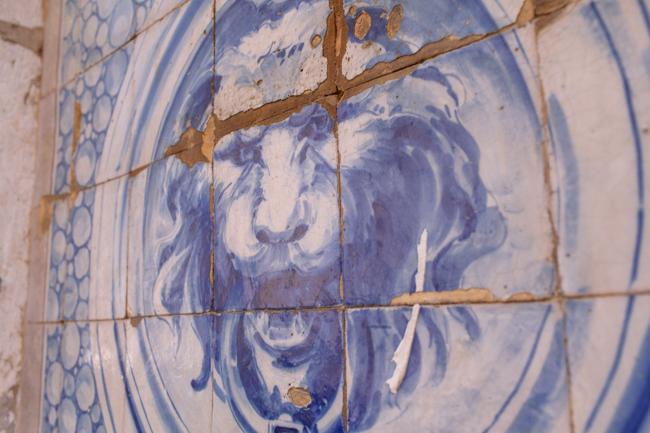 Lisbon lion tiles