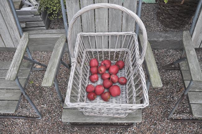 äpplekorgen