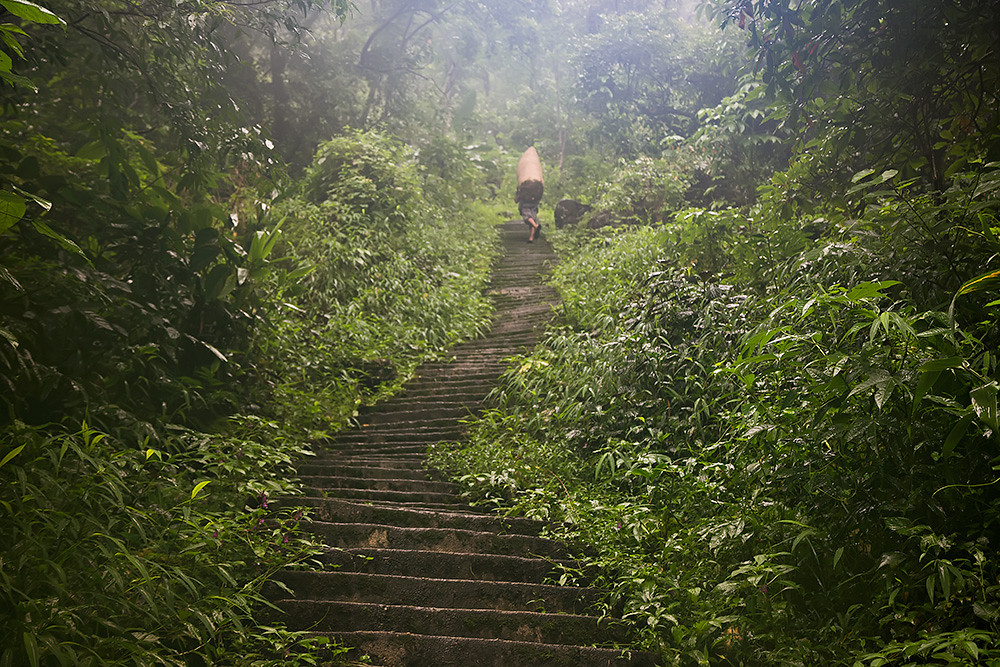 The stairs to the Double Decker Living Root bridge in Meghalaya, India.