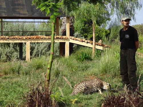 حديقة الحيوان في الرباط