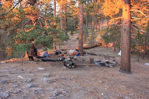 Sheep Camp No. 3 at Dusk