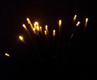Night Flower Lamp