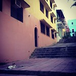 Image of Viejo San Juan near San Juan. square oldsanjuan puertorico squareformat pr viejosanjuan hotelelconvento iphoneography instagramapp xproii uploaded:by=instagram foursquare:venue=4b270d47f964a520718424e3