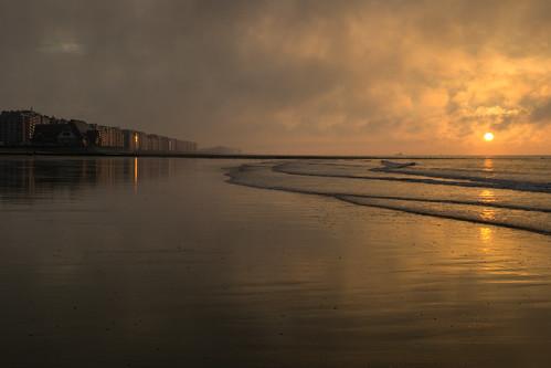 North Sea Coast #1
